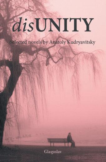 Disunity Cover